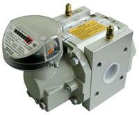 Счетчик газа RVG G100